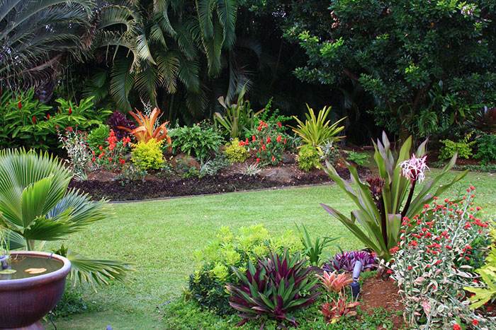 A guide to winter in the south florida garden for Tropical garden designs
