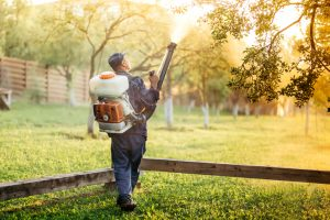 worker using sprayer for organic pesticide distribution in fruit orchard